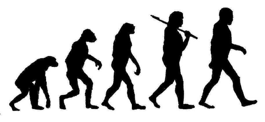 Teaching Evolution in the Church?