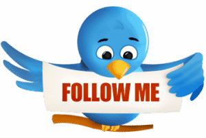 Twitter Follow Me Bird