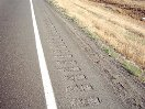 Thankful for the rumble strips